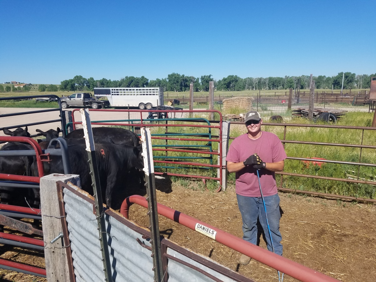 Summer 2018 Ranch Internship Opportuntiy